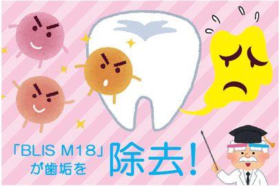 「BLIS M18(ブリス菌)」が歯垢を減らす