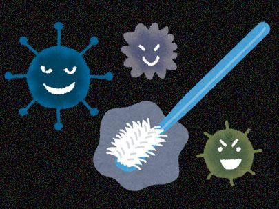 歯ブラシと細菌