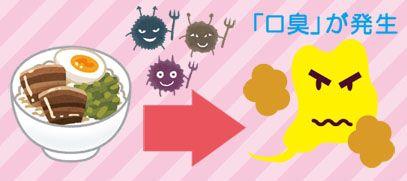 食べ物の残りカスを悪玉菌が分解し歯垢(口臭)が発生